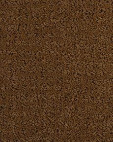 dixie-home-carpet-millport-6543-country-path-25120