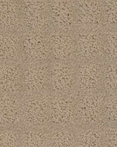 dixie-home-carpet-traditions-5776-shale-80125